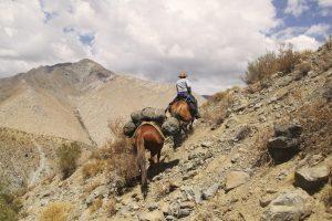 pionier-trail-7806
