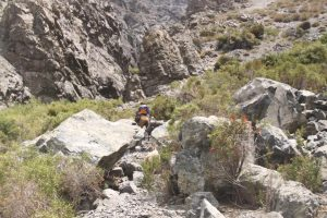 pionier-trail-7822