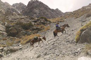 pionier-trail-7834