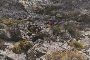 pionier-trail-7844