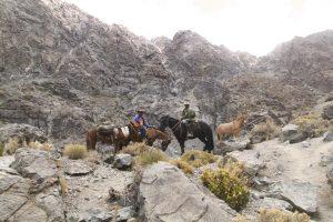 pionier-trail-7848