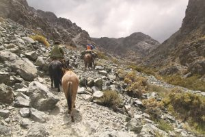 pionier-trail-7883