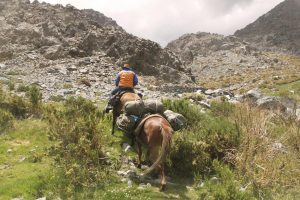 pionier-trail-7898