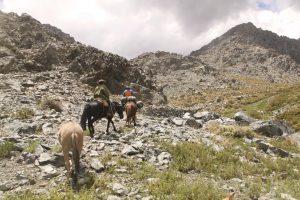 pionier-trail-7902