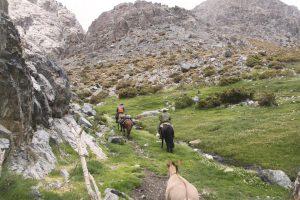 pionier-trail-7905