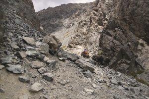 pionier-trail-7928