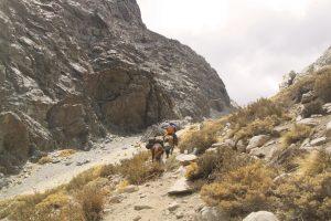 pionier-trail-7971