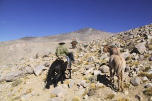 pionier-trail-8036