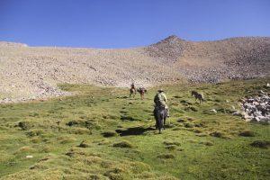 pionier-trail-8037