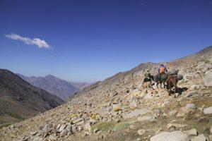 pionier-trail-8040