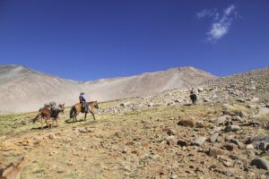 pionier-trail-8047