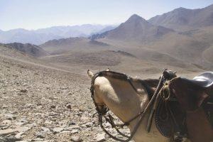 pionier-trail-8071