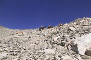 pionier-trail-8073