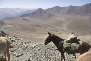 pionier-trail-8077