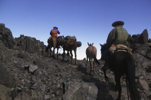 pionier-trail-8093