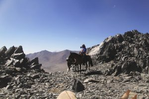 pionier-trail-8095