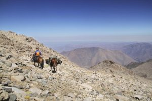 pionier-trail-8125