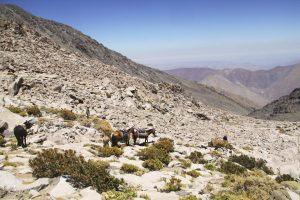 pionier-trail-8154