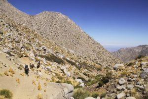 summit-trail-7248