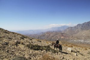 summit-trail-7329