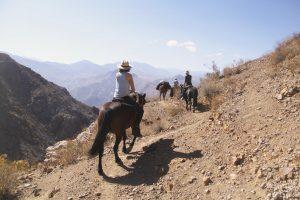 summit-trail-7685